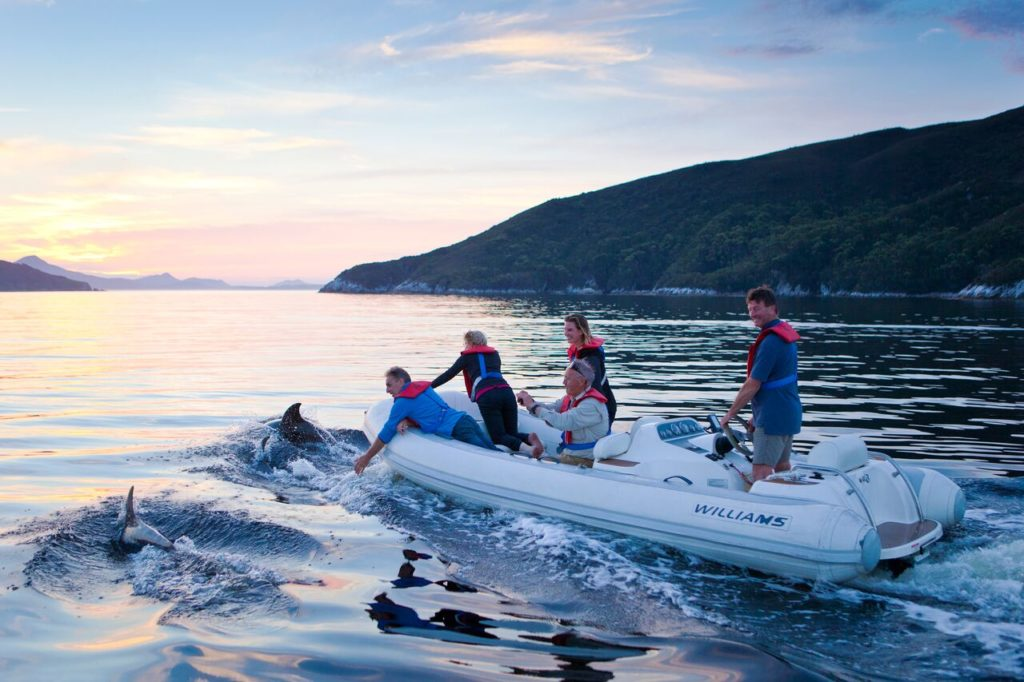 Tasmanian Adventures - Dolphins at Port Davey